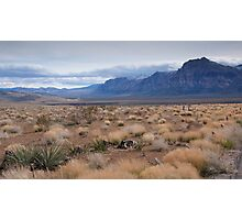 Blue Mountain Landscape in the Desert Southwest Photographic Print