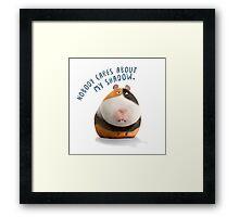 The secret life of pets Framed Print