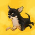 Dog Chihuahua Yellow Splash by Go van Kampen