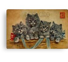 Post Card - kittens Canvas Print