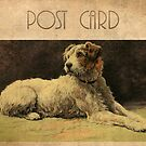 Post Card - Dog by © Kira Bodensted