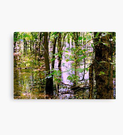 Swamp Waters Canvas Print