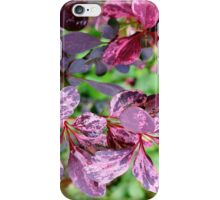Red Rover iPhone Case/Skin