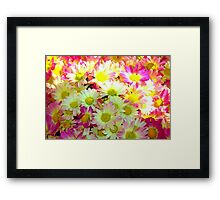 yellow/pink flowers Framed Print
