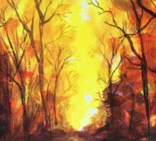Flaming Sunset Australian Bush Scenery  Sticker
