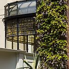Gardening Delights - Wisteria Aloe Vera And A Stained Glass Canopy - Left by Georgia Mizuleva