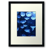 Life in the Deep Framed Print