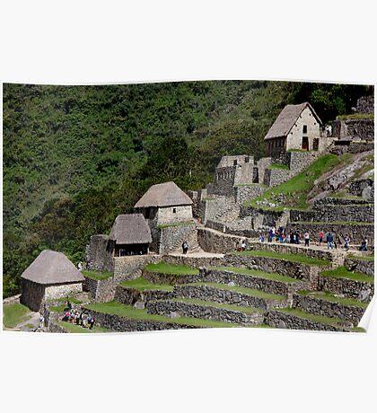 Machu Picchu Terraces Poster