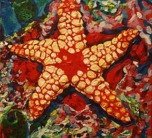 Starfish 2 by IanLeeOliver