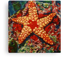 Starfish 2 Canvas Print
