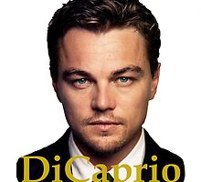 LEONARDO DiCaprio by Audrey Metcalf