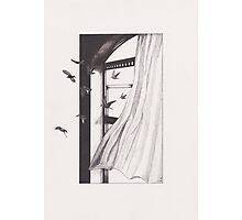Through Pearly Gates Photographic Print