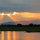 Zambezi splendour by Explorations Africa Dan MacKenzie