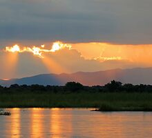 Zambezi splendour by Dan MacKenzie