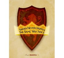 Chronicles of Narnia Illustration Photographic Print