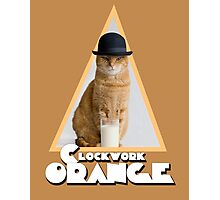 A Clockwork Orange (Cat) Photographic Print