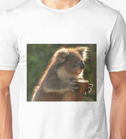 0252 Young Koala T-Shirt