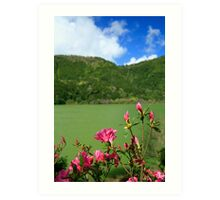 Furnas, Azores islands Art Print