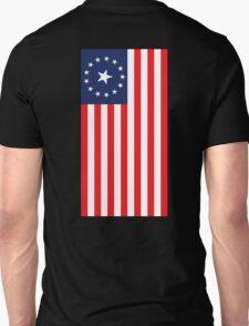 FALLOUT 3 AMERICAN FLAG T-Shirt
