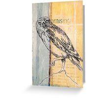 Owl Landing Greeting Card