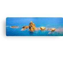 Offshore rocks Canvas Print