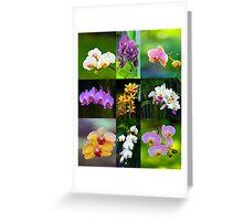 Elegant Orchids Greeting Card