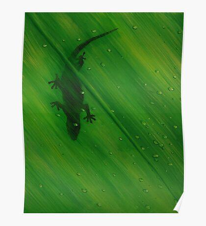 Gecko Leaf Poster