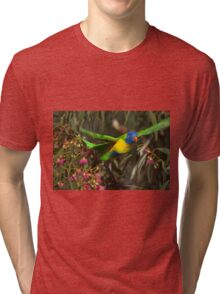 Rainbow Lorikeet lift off Tri-blend T-Shirt