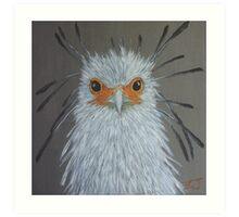 Bird Portrait - Secretary Bird Art Print