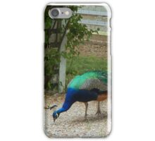 Hunt and Peck iPhone Case/Skin