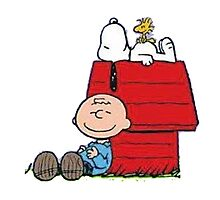 snoopy with charlie and woodstock Photographic Print