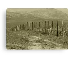 Barbed Wire Fence in a Field Canvas Print