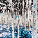 'Spirit Woods (In-Between Trees There Lie Mysteries)' by Jerry Kirk
