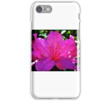 Natures Floral Hues Artistic Photograph Unique Decor iPhone Case/Skin