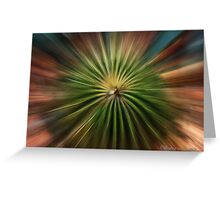 Exploding Cactus Greeting Card