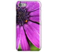 Through the Lens: Purple Flowers iPhone Case/Skin