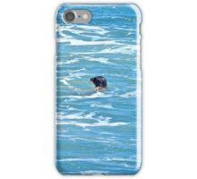 Bodega Bay Sea Lion iPhone Case/Skin