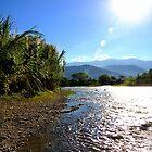 Rio Frio, Colombia II by Al Bourassa