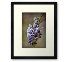 Wisteria Textured Framed Print