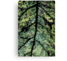 Psychedelic Leaf 2 Canvas Print
