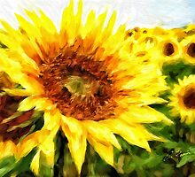 Sunflowers by Charlie Roman
