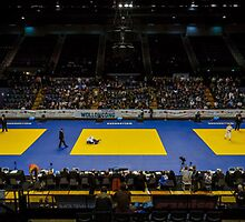Judo Federation of Australia 2014 Australian National Judo Championships by Andrew Croucher