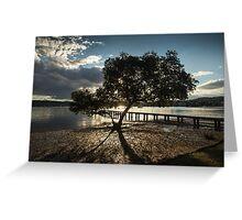 Mangrove Greeting Card