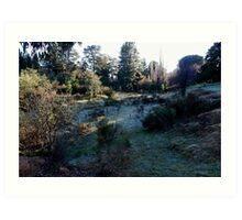 Frosty morning, Hill End. Art Print