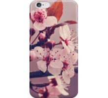 Soft side of Spring III iPhone Case/Skin