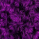 Floral Purple Abstract by David Dehner