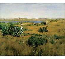 William Merritt Chase - Summer At Shinnecock Hills. Country landscape: Summer , country, travel, garden, rustic, relaxation, rest, game, trees, sun, flowers Photographic Print