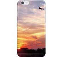 Sunset on the Marsh iPhone Case/Skin