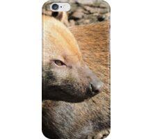 Bush Dog Profile iPhone Case/Skin