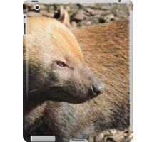 Bush Dog Profile iPad Case/Skin